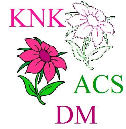 Auto Tracing for KNK, ACS, DM - On CD!